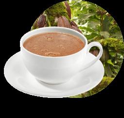 Cacaos